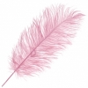 """Ostrich Drab Feathers 11-13"""" Premium Quality Baby Pink"""